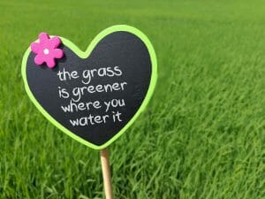 Why the grass isn't always greener - work - careers